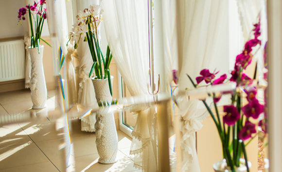 By the full package of flower beds of -10 PLN to the christening party in 2016